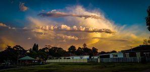Najem vozila Bankstown, Avstralija