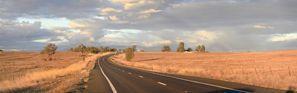 Najem vozila Gunnedah, Avstralija