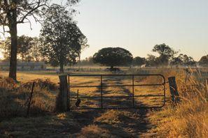 Najem vozila Morayfield, Avstralija