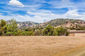 Najem vozila Muswellbrook, Avstralija