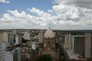 Najem vozila Araraquara, Brazilija