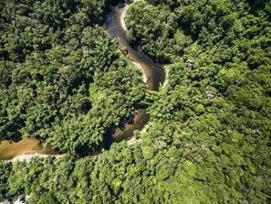 Najem vozila Vilhena, Brazilija