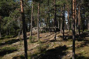 Najem vozila Paimio, Finska